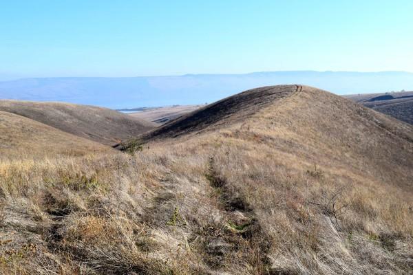 Памятник природы Балка Второй Лог