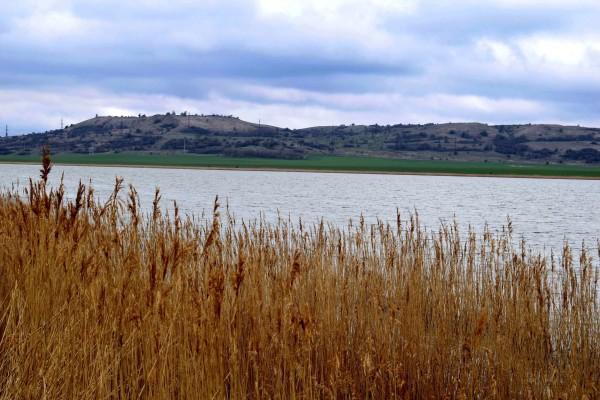 Вшивое озеро