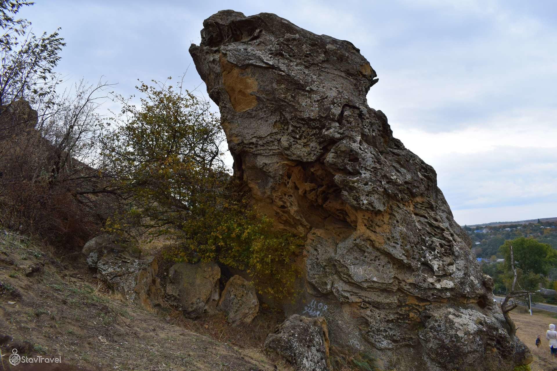 Гора Лягушинка