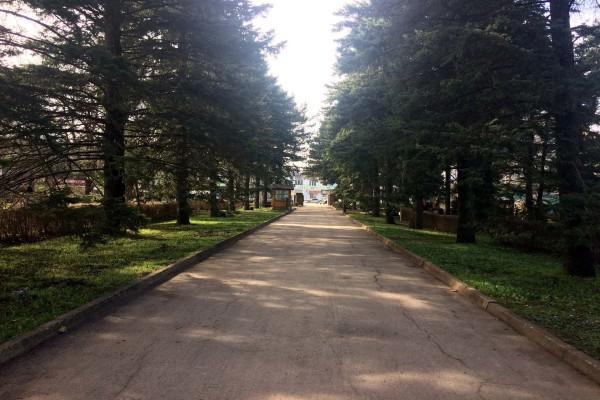 Ставропольский ботанический сад имени В.В. Скрипчинского