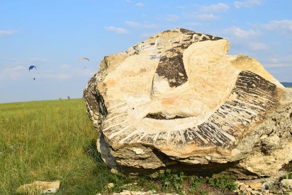 Камень Недрема на горе Недреманной